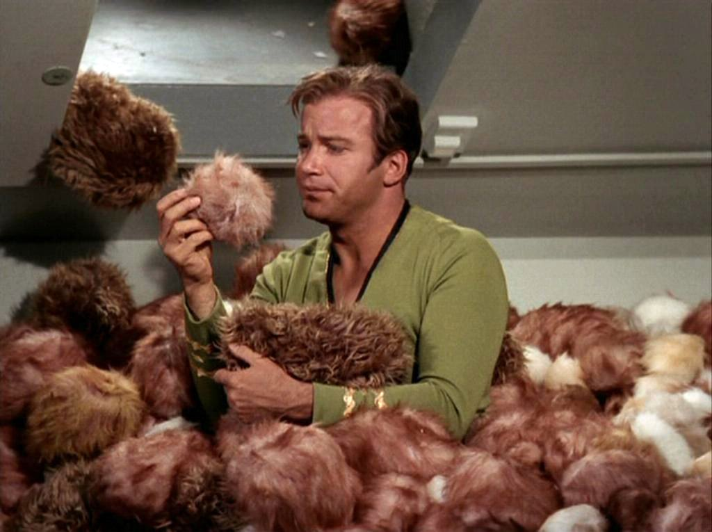 Tribbles seem like nice things to have around . . .until they take over your life!